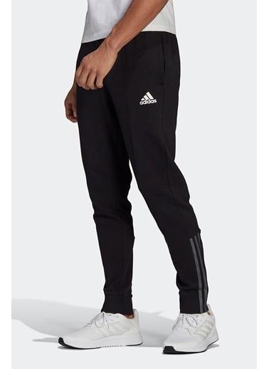 adidas Adidas Erkek Günlük Eşofman Altı M Dk Pt Gp8609 Siyah